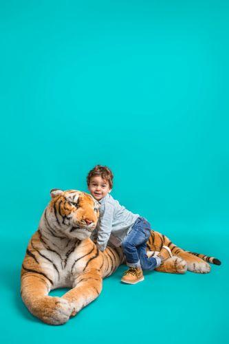 Petit garçon en studio photo avec un gros tigre en peluche